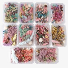 Random 1 Box More Than 8 Style Mix Flower Pressed Dried Dry Leaves Plants For Nail Art Decors Jewelry Making DIY Accessories