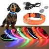 Dog LED Glowing Collar 1