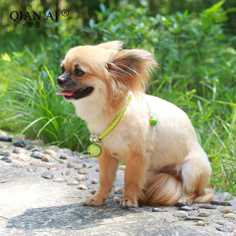Son Chen Pet Supplies Factory Industry Pu Round Rope Dreamy Bell Dog Cat Neck Ring Traction Belt