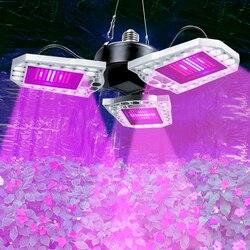 Lampa LED do wzrostu Panel LED Cultivo 100W 200W 300W pełnozakresowe LED rosną E27 LED lampa do uprawy roślin szklarniowe systemy hydroponiczne w Lampy LED do hodowania roślin od Lampy i oświetlenie na