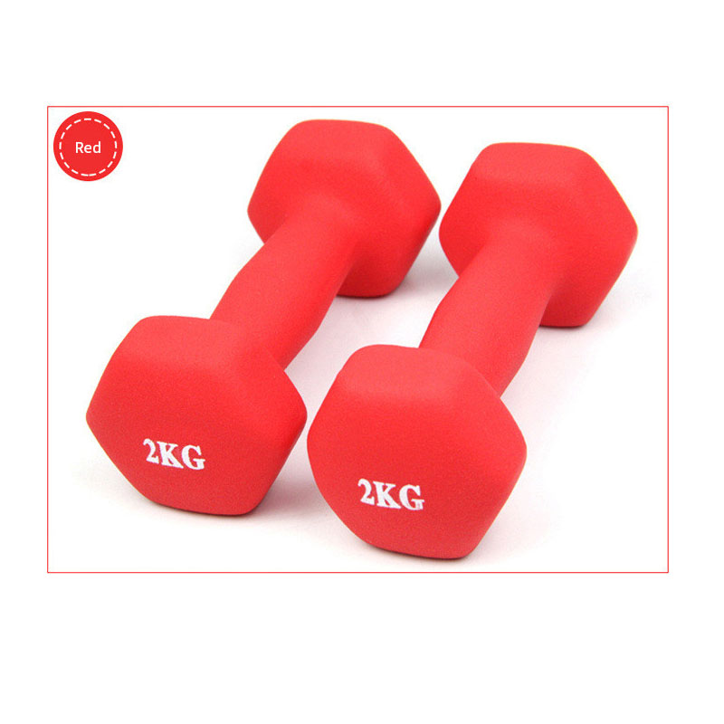 1kg 4colors  Matte Dumbbells  Dumbbells Rack Stands Dumbbells Holder Weightlifting Set Home Fitness Dumbbell Unisex Portable