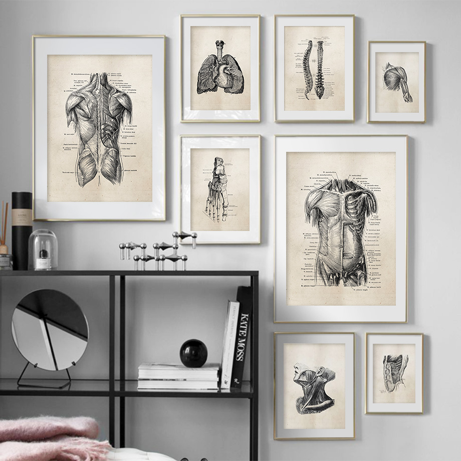 Anatomy Skeleton Patent Vintage Poster Wall Art Print Canvas Painting Nordic Posters And Prints Wall Pictures For Living Room