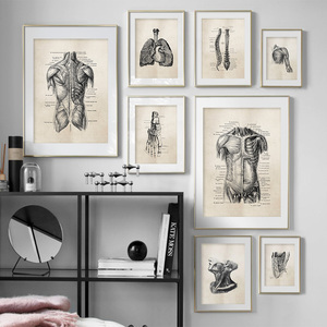 Anatomy skeleton Patent Vintage Poster Wall Art Print Canvas Painting Nordic Posters And Prints Wall Pictures For Living Room(China)
