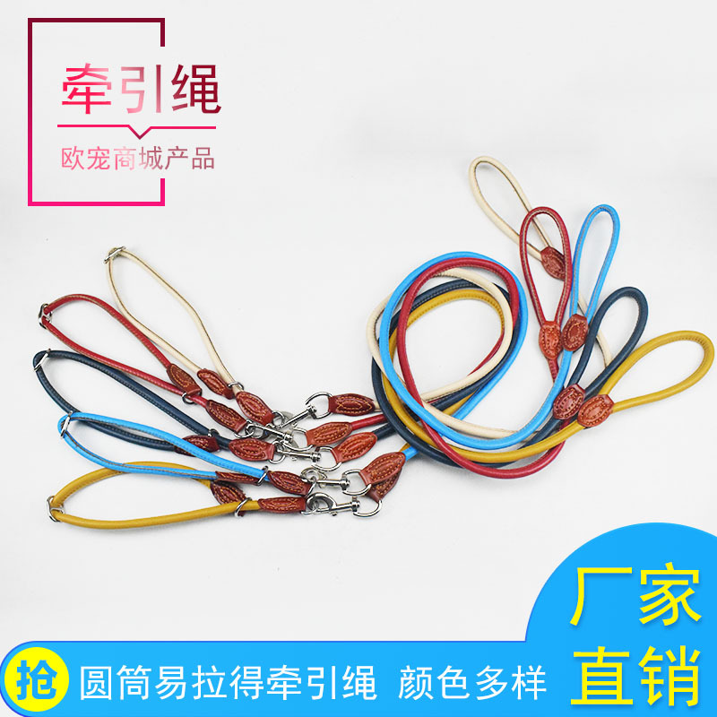 Dog P Pendant Training Item Dog Hand Holding Rope Large Walk Teddy Golden Retriever Pullover Dog Pendant Sub-Pet Supplies