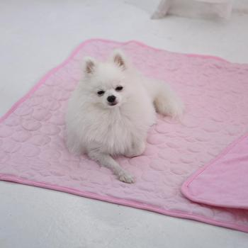 Pet Dog Cats Cooling Mat Pad Breathable Sofa Cushion Blanket Sleeping Mattress dog mats pet ice silk mats cat cool mats ice mats image