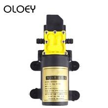 คุณภาพสูงDC12V 6L/Min Intelligence MicroความดันสูงไดอะแฟรมWater Sprayerล้างรถการเกษตรไฟฟ้าปั๊มน้ำ