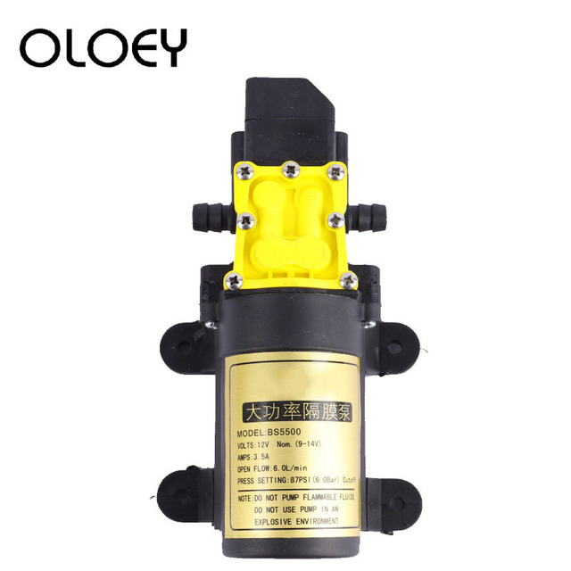 High Quality DC12V 6L/min Intelligence Micro High Pressure Diaphragm Water Sprayer Car Wash Agricultural Electric Water Pump