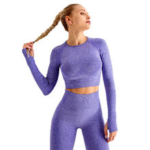 Women Sportswear Yoga Set Gym Clothing Tracksuit Long Sleeve Crop Top High Waist Seamless Leggings for Fitness Sports Short Suit