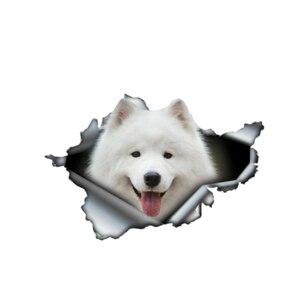 Samoyed 3D Pet Graphic Animal