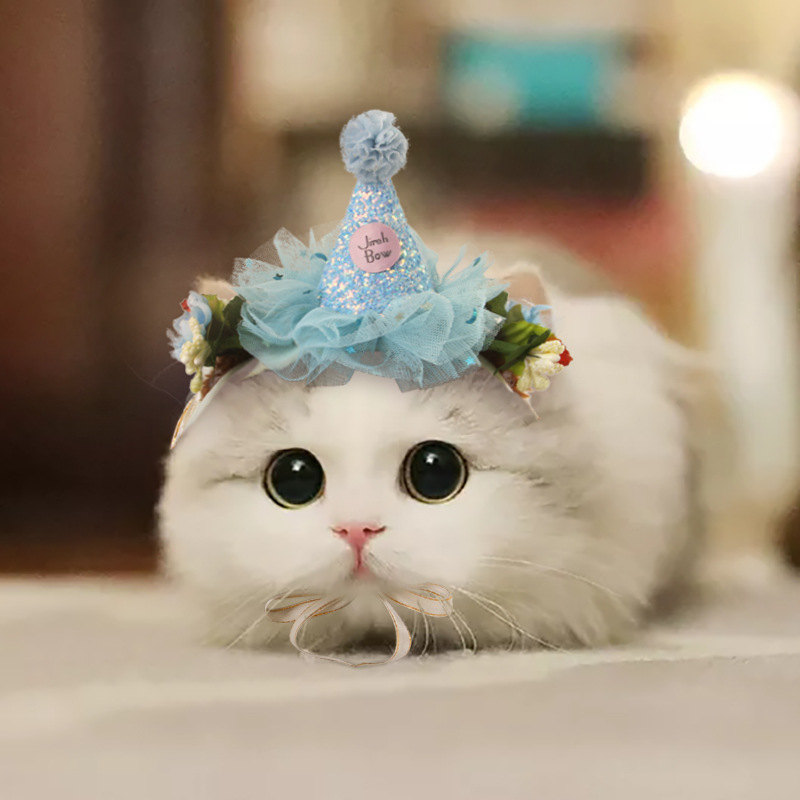 2021 Creativity Pets Headdress Lace Cat Hats Flower Fairy Kitten Accessories Birthday Dress Up Christmas Products For Small Dogs