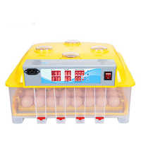 Mini Egg Incubator 36 Eggs Circulating Duct High Hatching Rate Incubadora Automatic Thermostat for 12V/220V Couveuse