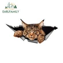 EARLFAMILY 13 سنتيمتر x 6.1 سنتيمتر مين الراكون سيارة ملصق ممزق المعادن ملصق عاكس ملصق ثلاثية الأبعاد مضحك كبير القط ملصق سيارة التصميم مقاوم للماء