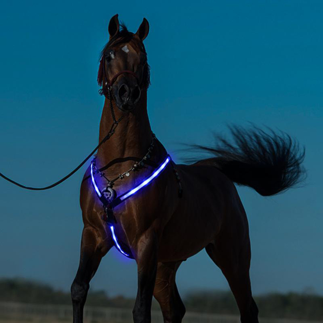 USB Chargeable LED Equestrian Halter Horse Riding Bridle  2