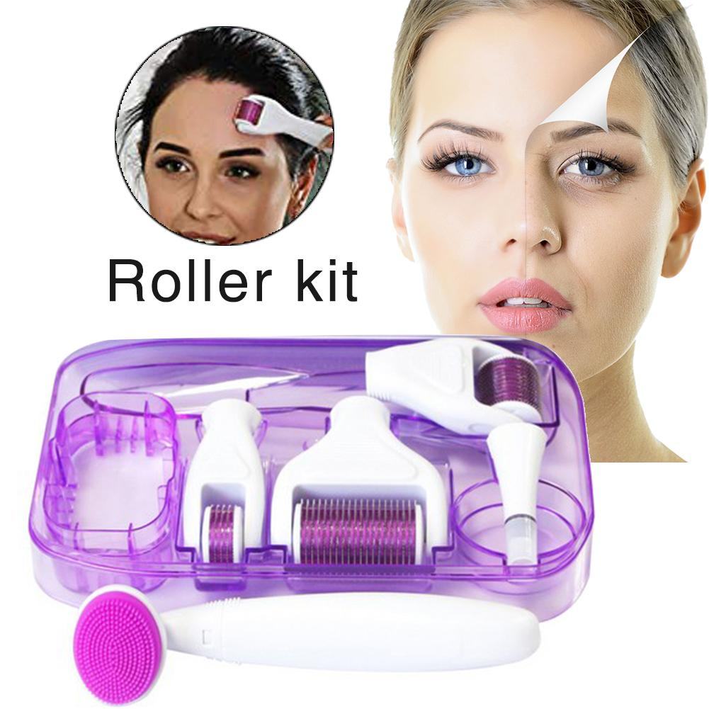6 In 1 Roller Kit For Face And Body 0.25mm And 0.3mm Micro Needle Dermaroller With 5 Replaceable Roller Heads Storage Case Tools