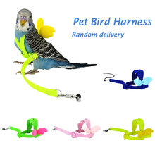 Pet Parrot Traction Strap Bird Harness Leash Flying Rope Straps Outdoor Training Rope For Budgerigar Lovebird Cockatiel Lizard(China)