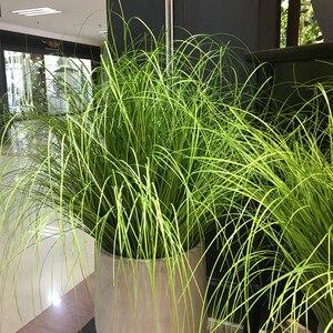 60 см искусственные листья моделирование лук трава листья цветок украшение цветок Организация лужайки инженерные растения