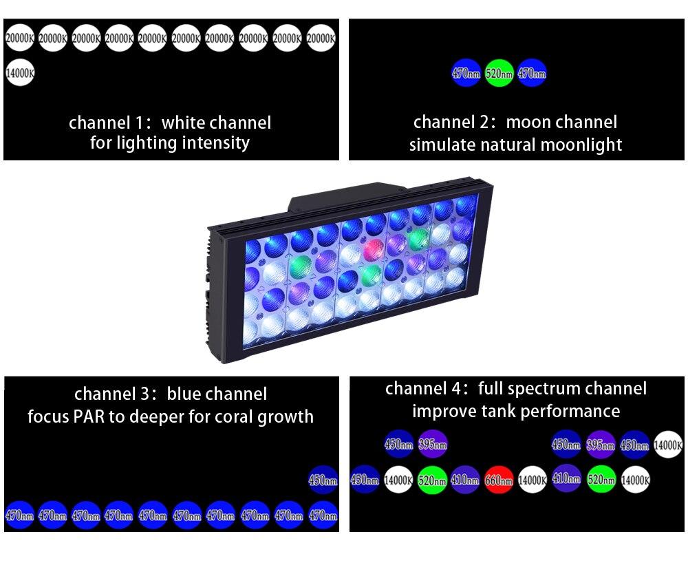 LED Layout1