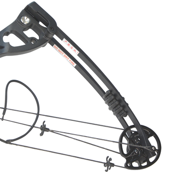 1set 30-55lbs Archery Compound Bow and Arrow Set Length 38Inch Metal Alloy IBO 310FPS Outdoor Shooting Hunting Accessories 2