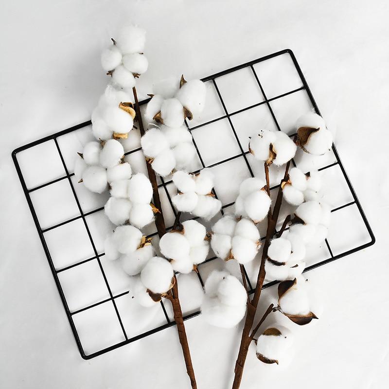 10 cabeça de algodão naturalmente seco flor artificial plantas ramo floral para festa de casamento decoração flores falsas decoração para casa|Flores secas artificiais|   -