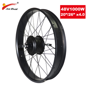 "Powerful 48V 1000W Hub Motor Rear Electric Wheel Motor Fat Tire 20"" 26"" 4.0 Brushless Gear Hub Motor for ebike conversion Kit