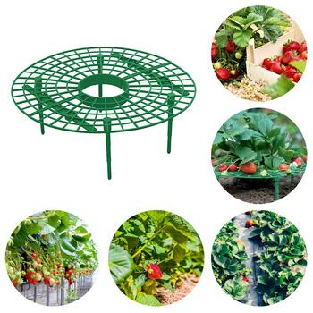 1 sztuk truskawka stojak uchwyt ramki balkon sadzenia stojak owoców wsparcie roślin kwiat wspinaczka winorośli filar ogrodnictwo stojak tanie i dobre opinie CN (pochodzenie) PP resin As Shown 30 X 9cm 11 81 X 3 54
