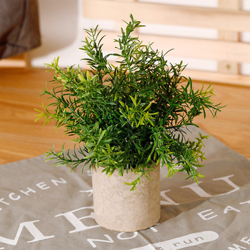 Artificial Decorative Greeting Simulated Bugloss Plastic Flowers Grass Wedding/Christmas Balcony Potted Plants Autumn Home Decor image
