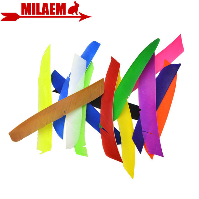 50pcs Archery Full Length Real Turkey Feather Arrow Feather Fletching Left Wing Hunting Shooting DIY Arrow Accessories