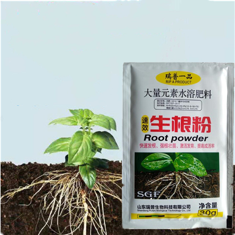 Plant Growth Rapid Rooting Powder 30g Water Soluble For Seedling Bonsai Tree Cutting Fungicide Rooting Hormones Fertilizer Special Price 6439 Cicig