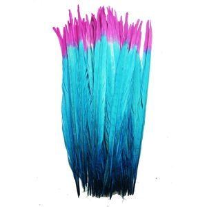 Image 4 - 100Pcs/lot 40 45CM 16 18inch Two Colors Beautiful Pattern Ringneck Pheasant Tail Feathers for Crafts Carnival Decoration Plumes