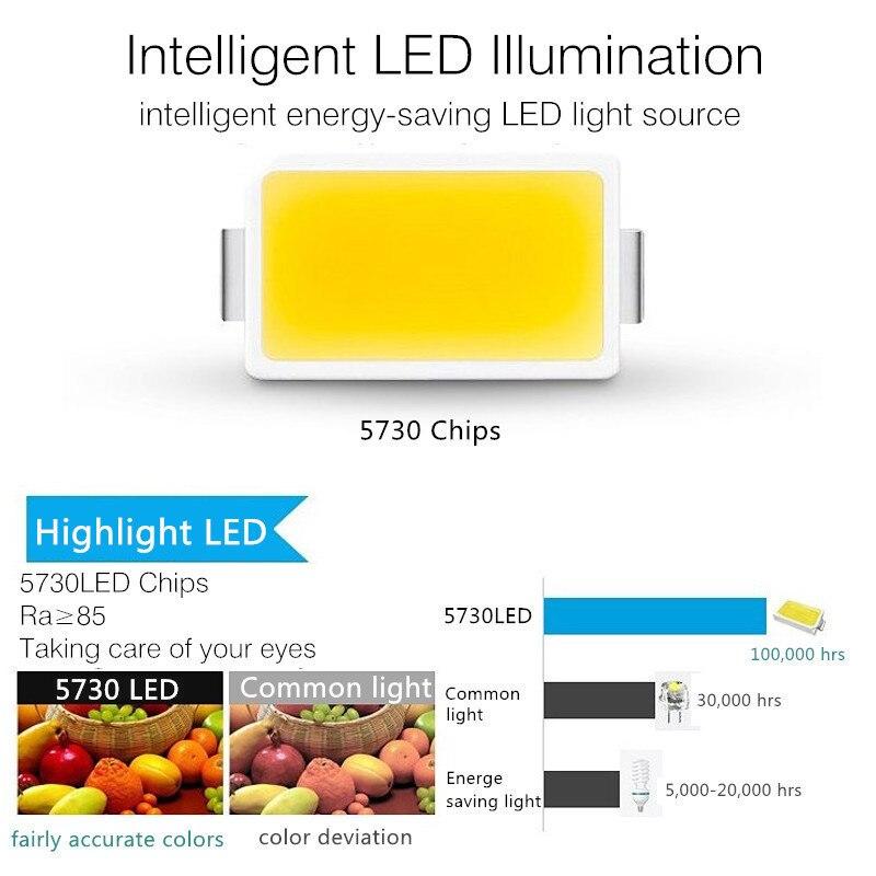 220V LED Современные хрустальные Потолочный светильник цветок Форма лампа разноцветное украшение для дома коридоров светильник для прихожей Гостиная Спальня