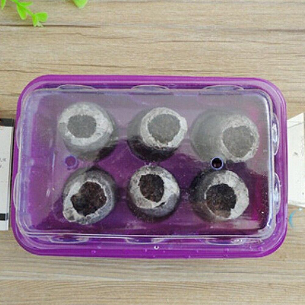 20 ячеек лотки для саженцев устройство для проращивания семян коробка растение цветок растут Стартовое прорастание блок сжатого торфа