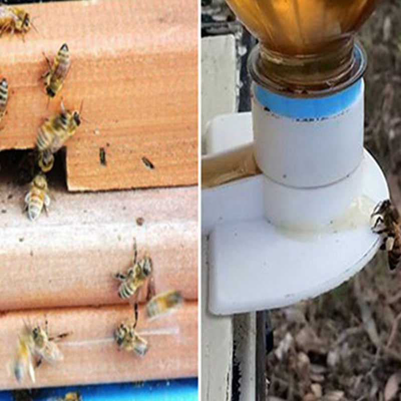 10pcs Bee Feeder Honey Entrance Feeder Beekeeping Cap Thread Feeder Bee Keeping Equip