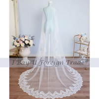 Luxury Light Ivory 3M Long Cathedral Wedding Veil Soft Lace Applique Trim Lace One Layer Tulle Bridal Veil without Comb