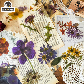 Mr.paper 6pcs/bag Botany Specimen Retro PET Big Deco Stickers Scrapbooking Cute Junk Bullet Journal Graffiti Stationery - discount item  23% OFF Stationery Sticker