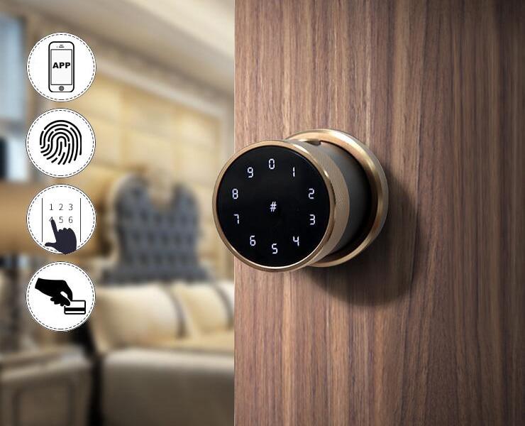 H99d0d30829934f64a5bb12e4256d3545h TT lock APP Fingerprint Door Lock Digital Keyboard Smart Card Combination knob Lock For Home / Office / Hotel DIY Door Lock