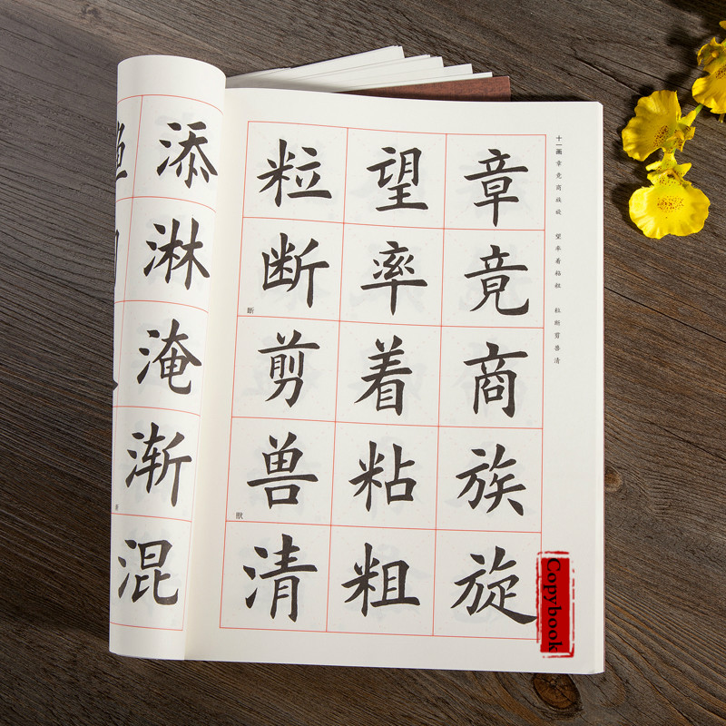 Chinese Calligraphy Copybook Tian Yingzhang Simple Regular Script Brush Copybook Adult Student Brush Calligraphy Tutorial Kaishu