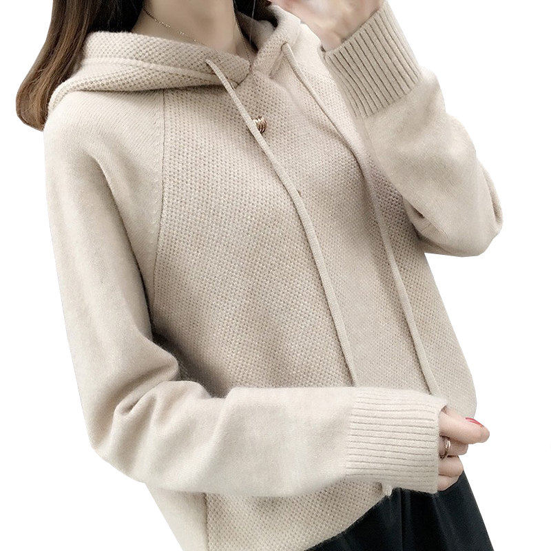 Hooded Sweater Women Autumn Sweater Sueter Mujer Invierno 2019 New Loose All Match Solid Tops Bottoming Knitwear Pull Femme