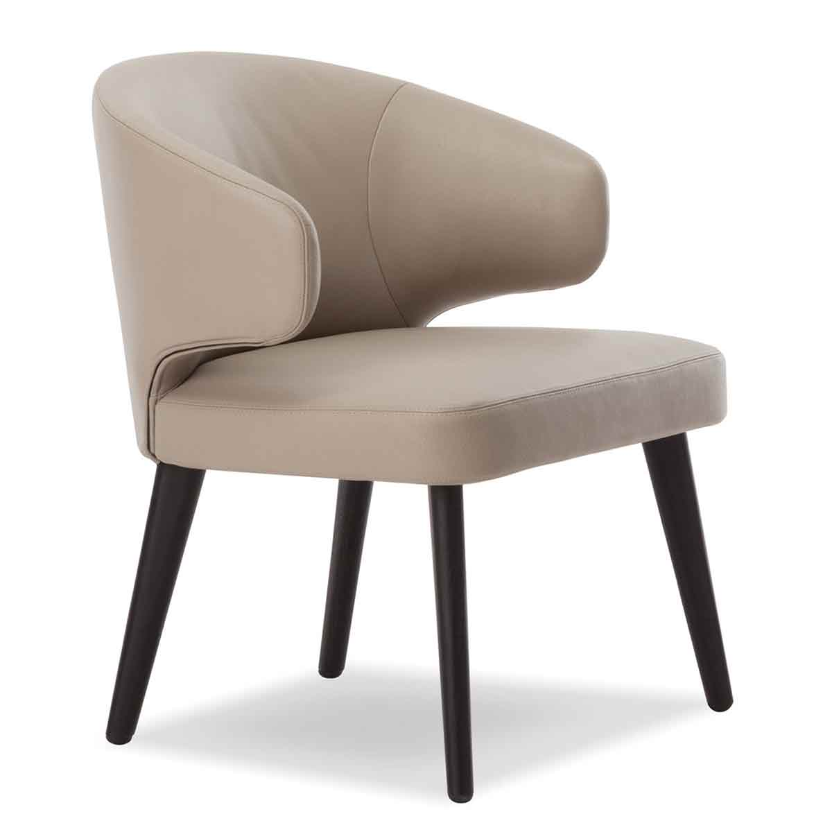 Northern Europe Light Luxury Dining Chair Family Restaurant Leisure Chair Modern Simple Single Iron Back Chair Ins Dressing