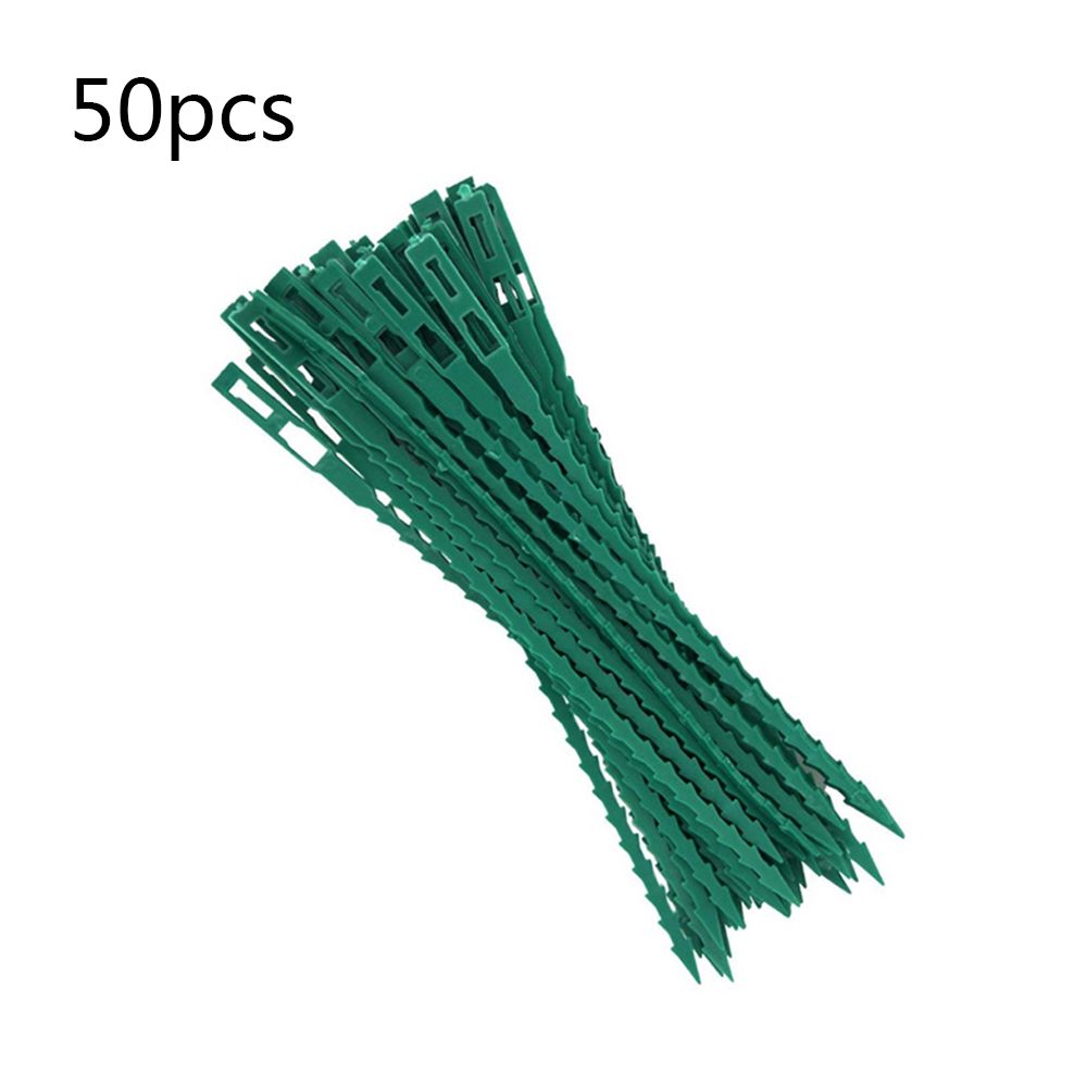 50 100pcs Vine Climbing Plants For Tomatoes Orchids Bonsai Wire Flower Cucumber Grape Rattan Plant Support Agriculture Tools