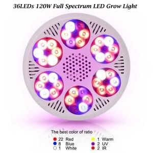 Image 2 - 120ワットフルスペクトルはライト36 leds cob led電球ランプ植物水族館花種子庭の野菜温室E27