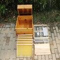 Colméia de madeira completa com quadro na base de colméia cozinhar acabado abeto jardim apicultura ferramenta d007