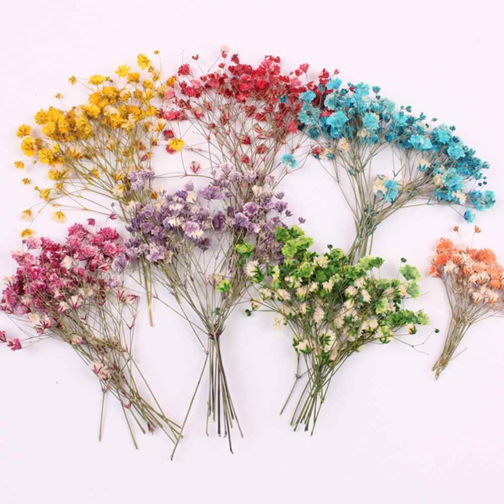 12Pcs Decorative Dried Flowers Flower Artificial Flower Bouquet Branch DIY Dry Flowers Scrapbooking Gypsophila Party Gifts Decor