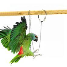 Птица Попугай ножной браслет из нержавеющей стали лодыжки ноги кольцо стенд цепь открытый Летающий Обучение Птица аксессуары S/M/L/XL