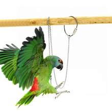 Chaîne de pied oiseau perroquet en acier inoxydable, anneau de pied de cheville, chaîne de support d'entraînement volant en plein air, accessoires d'oiseaux S/M/L/XL
