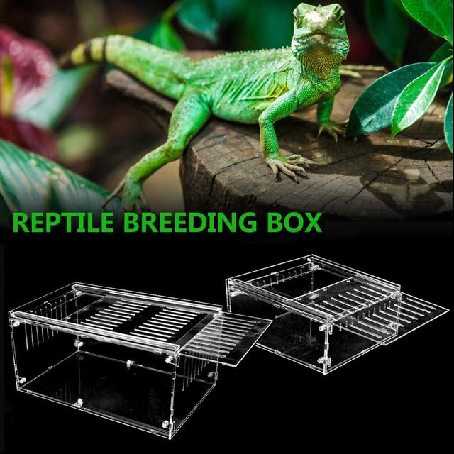 Reptile Breeding Box For Spiders - Lizards - Frogs - Crickets - Turtles 5