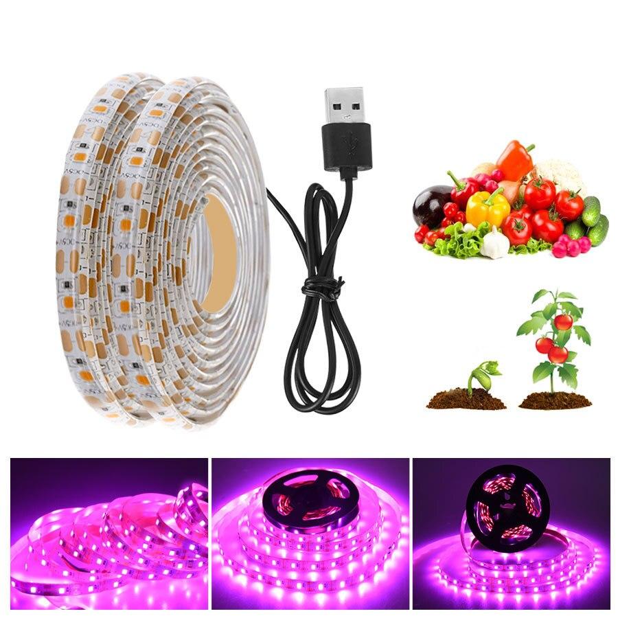 LED تنمو ضوء الطيف الكامل USB تنمو شرائط مصباح رقاقة LED مصباح فيتو للنباتات الزهور الدفيئة المائية USB ضوء النبات