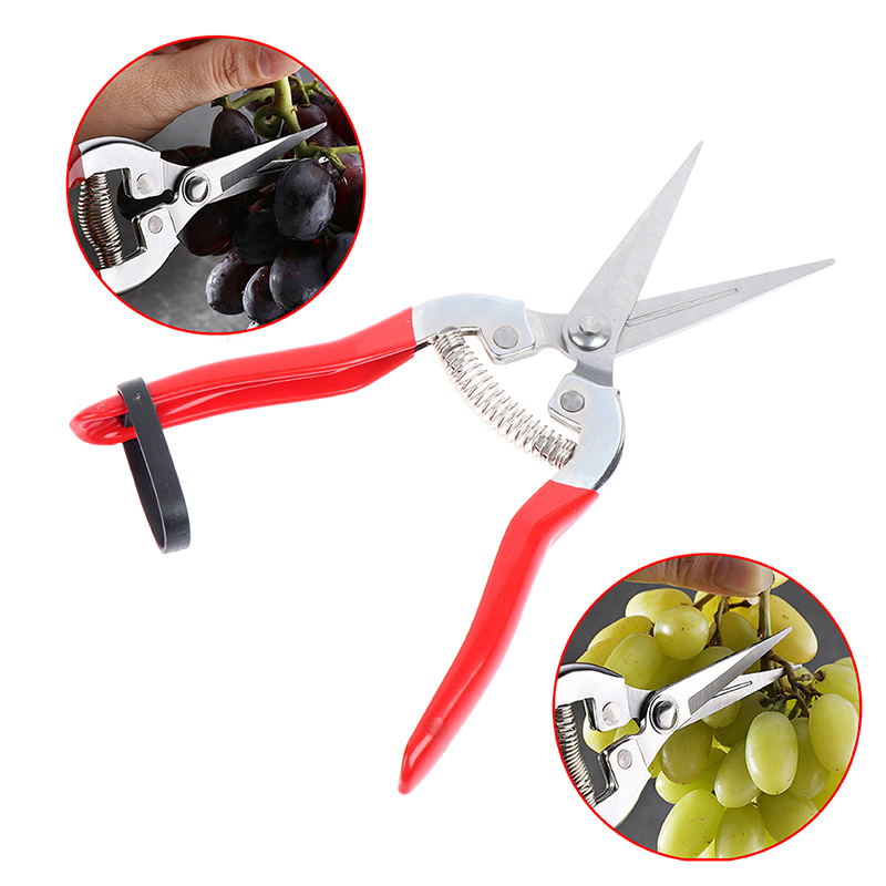 Garden Pruning Shear High Carbon Steel Scissors Grafting Bonsai Tool Fruit Tree Flowers Branch Pruner Trimmer Garden Tools