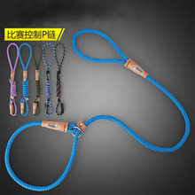 1.2M Nylon Training Dog Leash and collar One Rope Webbing Recall Lead Line Pet Traction Rope Great for Teaching Camping Backyard