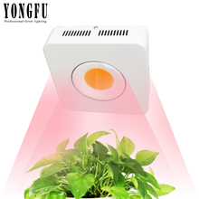 COB LED Grow Light 100W 200W full spectrum Plant tent indoor Plants Hydroponics Cultivation Flower growing lamp
