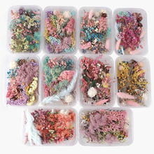 1 caixa de flores secas plantas para aromaterapia vela resina cola epoxy pingente colar jóias fazendo artesanato diy acessórios novo
